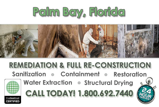 palm bay fl mold remediation and water extraction