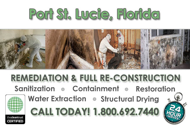 port st lucie fl mold removal services